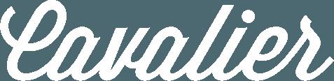 Navi – A Full-Screen Responsive WordPress Menu